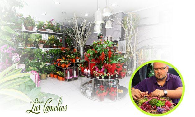 Bienvenidos al blog de Floristeria Las Camelias