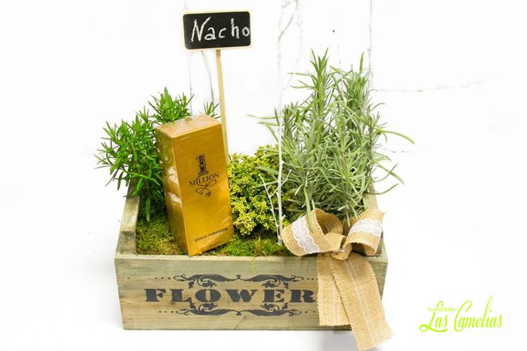Regalos originales para aniversarios plantas y perfume