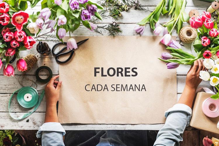 envío de flores todas las semanas