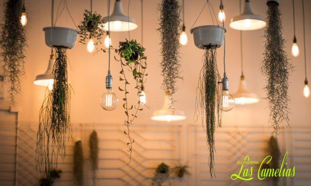 Decoración floral para empresas