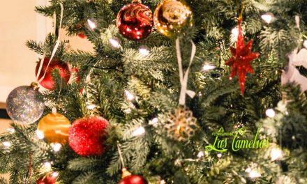 Decoración floral para Navidad de hogares.