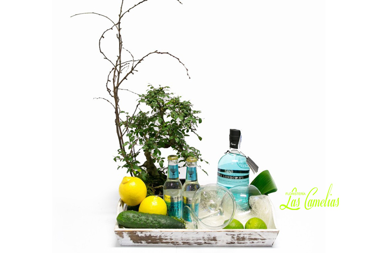 Bonsai & Gin