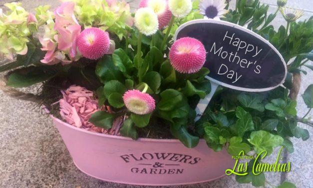 Día de la Madre. Ideas para regalar.