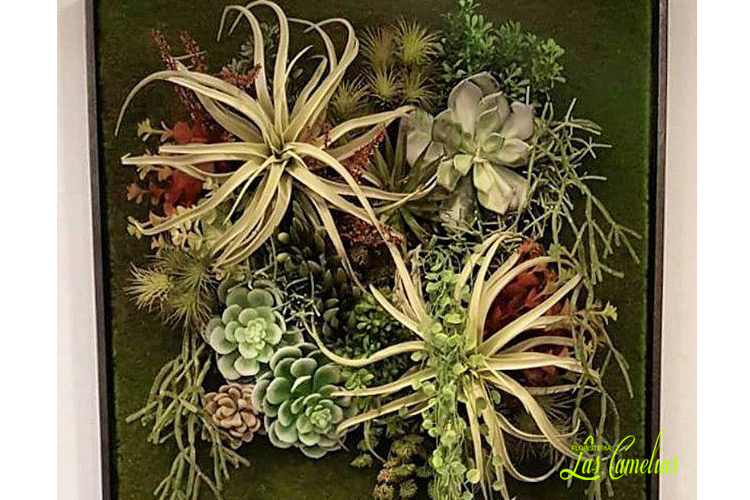 Jardines verticales decoración