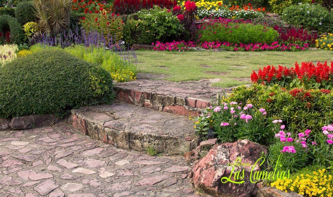 Decoración de jardines en verano: flores, plantas y más