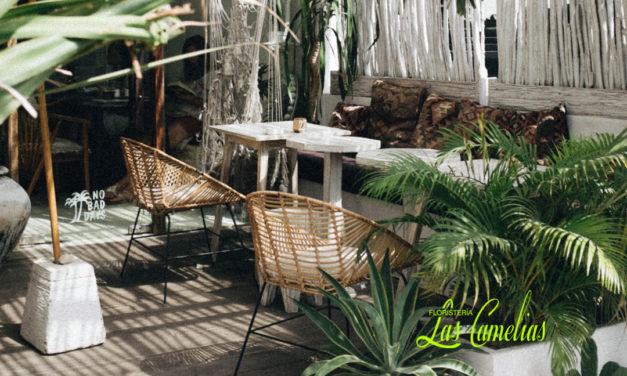 Decoración de terrazas en verano: flores, plantas y más