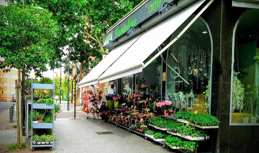 Conoce la tienda de nuestra floristería