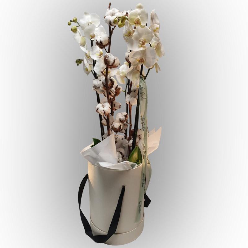 Sombrerera orquídea elegance