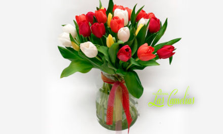 Novedades arreglos florales